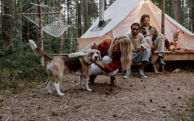 Campings con perro en Cataluña