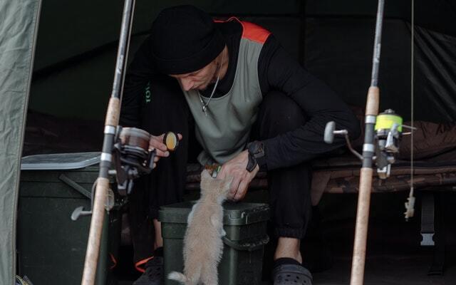 Campings que admiten perros en bungalows en Galicia